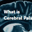 A Guide to Cerebral Palsy In Adults